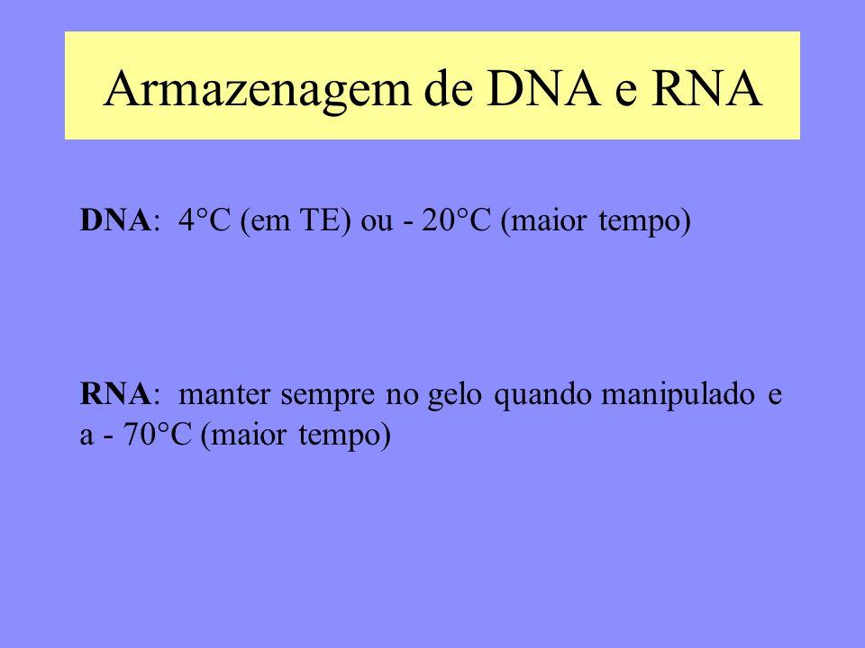 Armazenagem de DNA e RNA