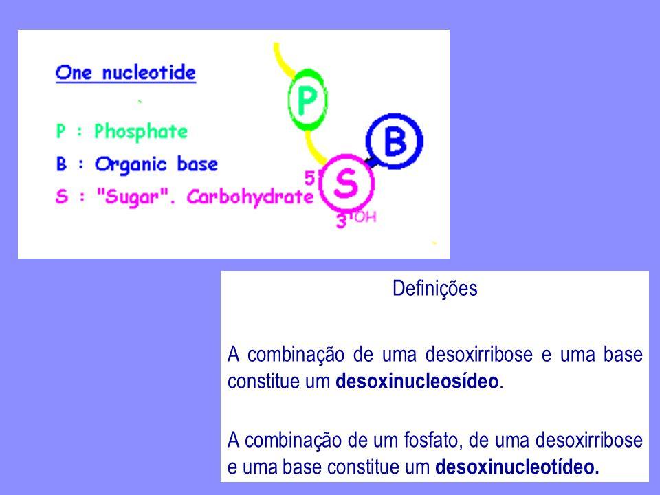 Definições A combinação de uma desoxirribose e uma base constitue um desoxinucleosídeo.