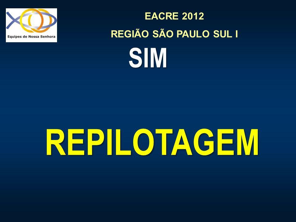 SIM REPILOTAGEM