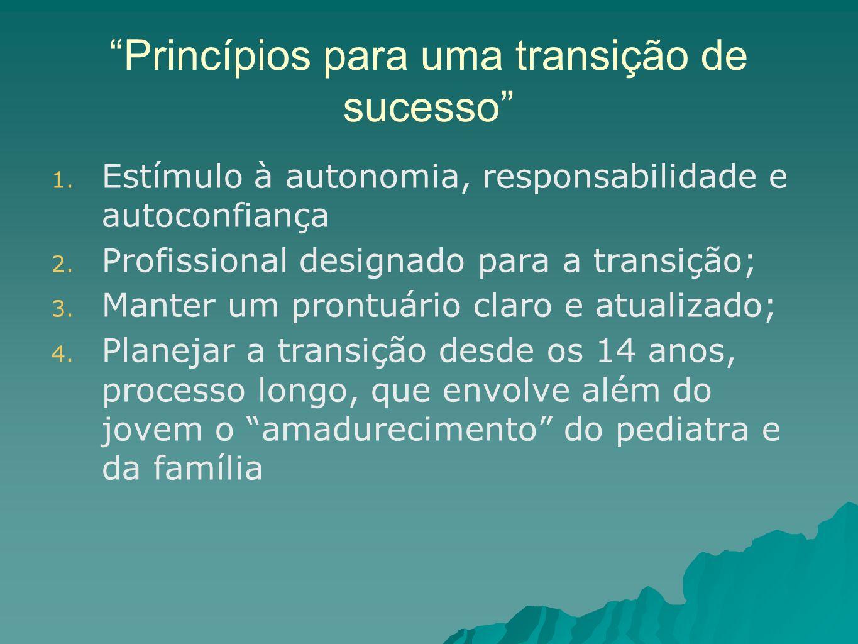 Princípios para uma transição de sucesso