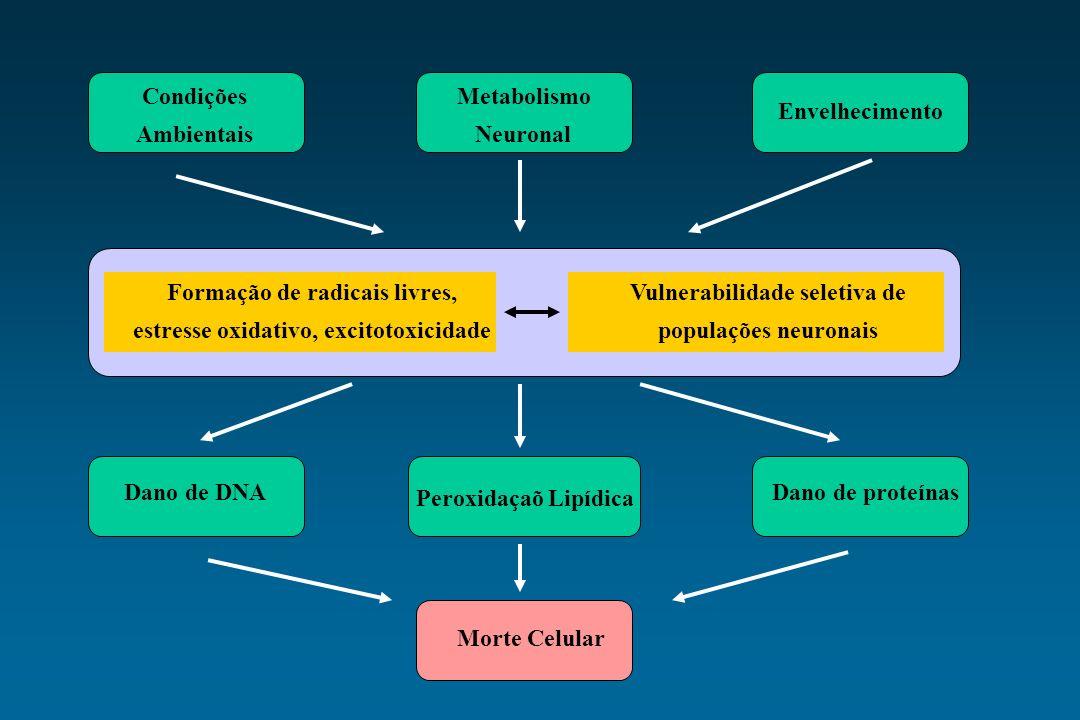 Formação de radicais livres, estresse oxidativo, excitotoxicidade