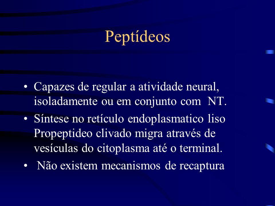 PeptídeosCapazes de regular a atividade neural, isoladamente ou em conjunto com NT.