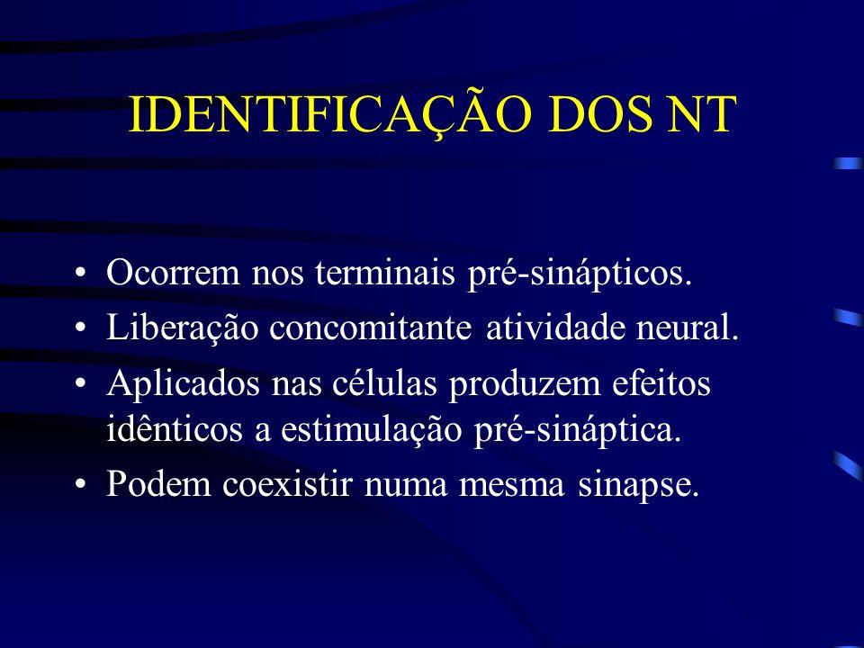 IDENTIFICAÇÃO DOS NT Ocorrem nos terminais pré-sinápticos.