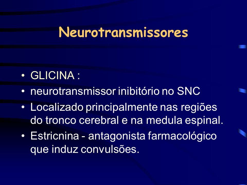 Neurotransmissores GLICINA : neurotransmissor inibitório no SNC