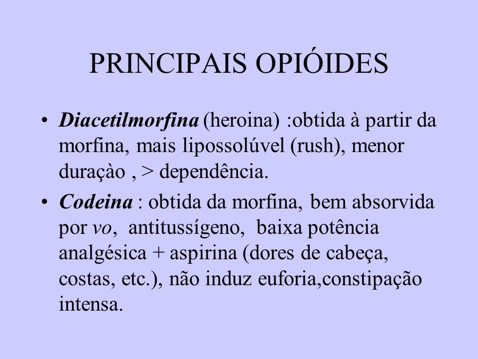 PRINCIPAIS OPIÓIDES Diacetilmorfina (heroina) :obtida à partir da morfina, mais lipossolúvel (rush), menor duraçào , > dependência.