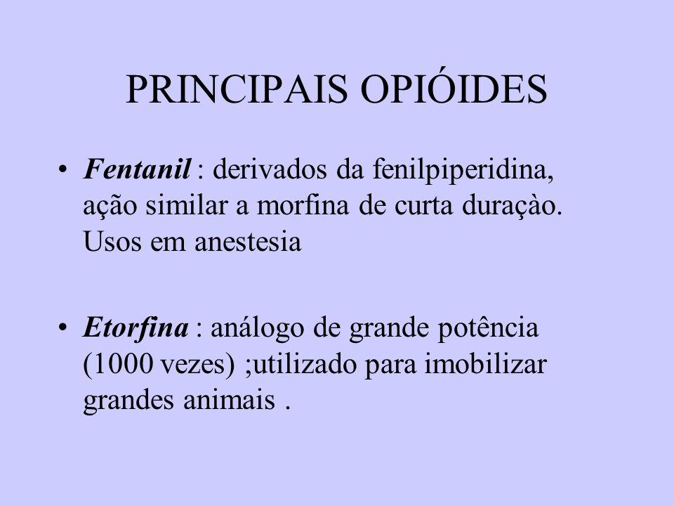PRINCIPAIS OPIÓIDES Fentanil : derivados da fenilpiperidina, ação similar a morfina de curta duraçào. Usos em anestesia.