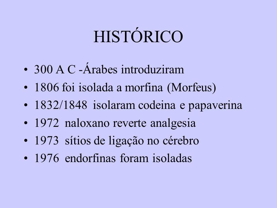 HISTÓRICO 300 A C -Árabes introduziram