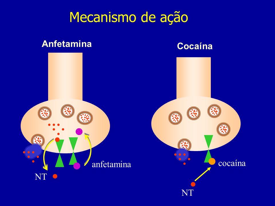 Mecanismo de ação Anfetamina Cocaína anfetamina cocaína NT NT