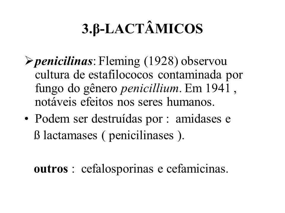 3.β-LACTÂMICOS