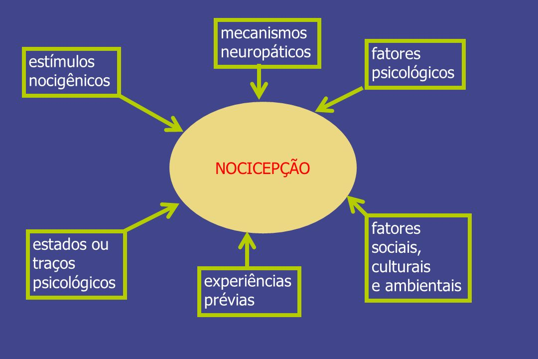 mecanismos neuropáticos. fatores. psicológicos. estímulos. nocigênicos. NOCICEPÇÃO. fatores. sociais,