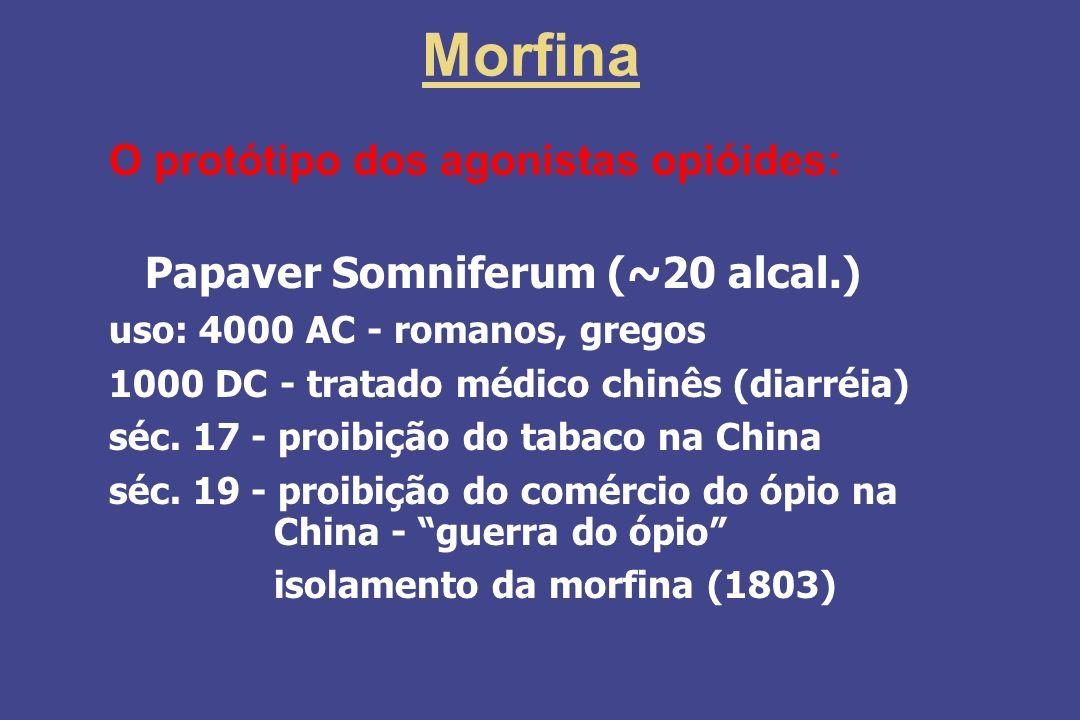 Morfina O protótipo dos agonistas opióides:
