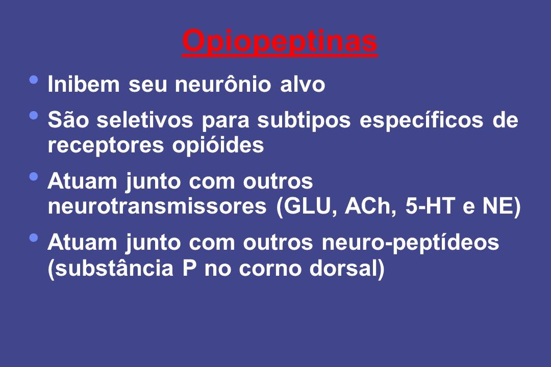 Opiopeptinas Inibem seu neurônio alvo