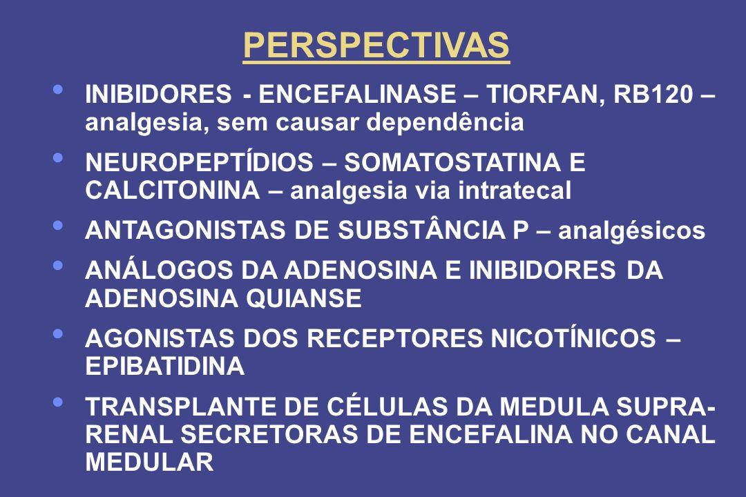 PERSPECTIVAS INIBIDORES - ENCEFALINASE – TIORFAN, RB120 – analgesia, sem causar dependência.