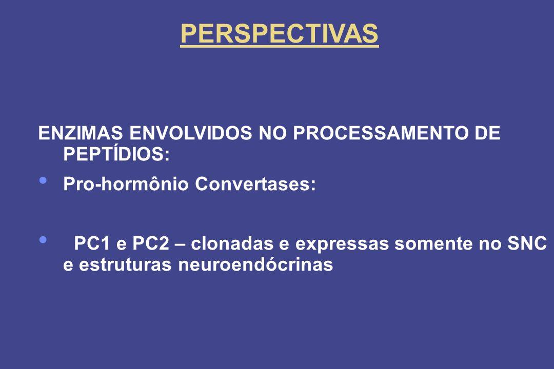PERSPECTIVAS ENZIMAS ENVOLVIDOS NO PROCESSAMENTO DE PEPTÍDIOS:
