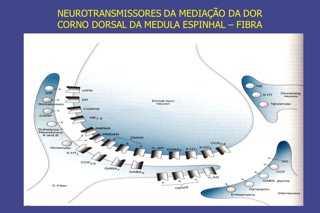 NEUROTRANSMISSORES DA MEDIAÇÃO DA DOR