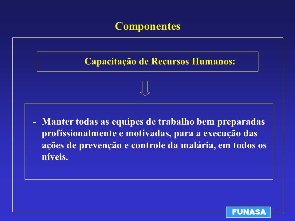 Componentes Capacitação de Recursos Humanos: