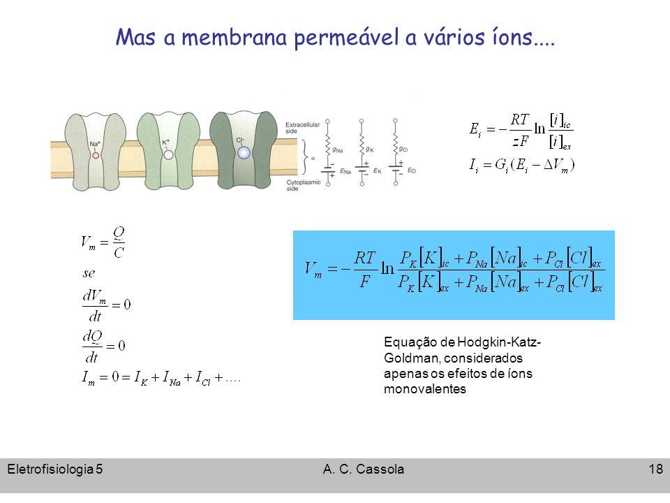 Mas a membrana permeável a vários íons....