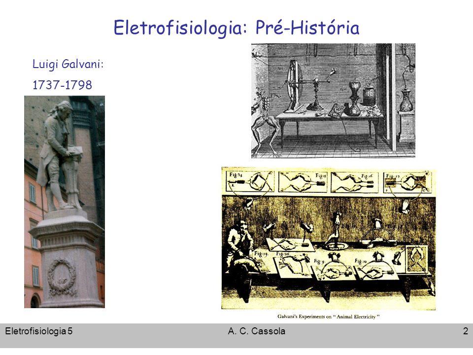 Eletrofisiologia: Pré-História