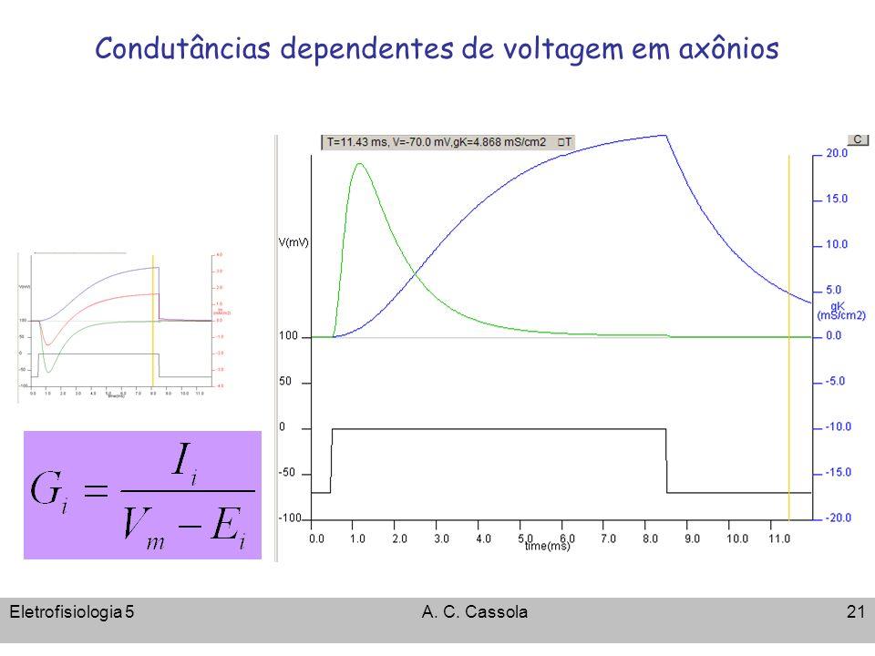 Condutâncias dependentes de voltagem em axônios
