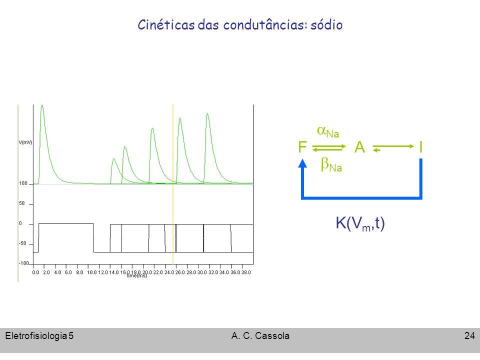 Cinéticas das condutâncias: sódio