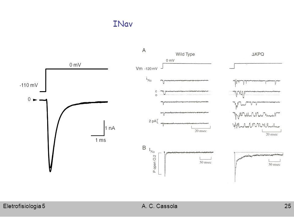 INav 0 mV -110 mV 1 nA 1 ms Eletrofisiologia 5 A. C. Cassola