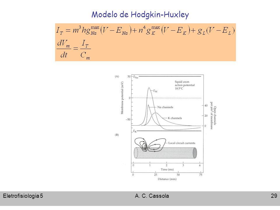 Modelo de Hodgkin-Huxley
