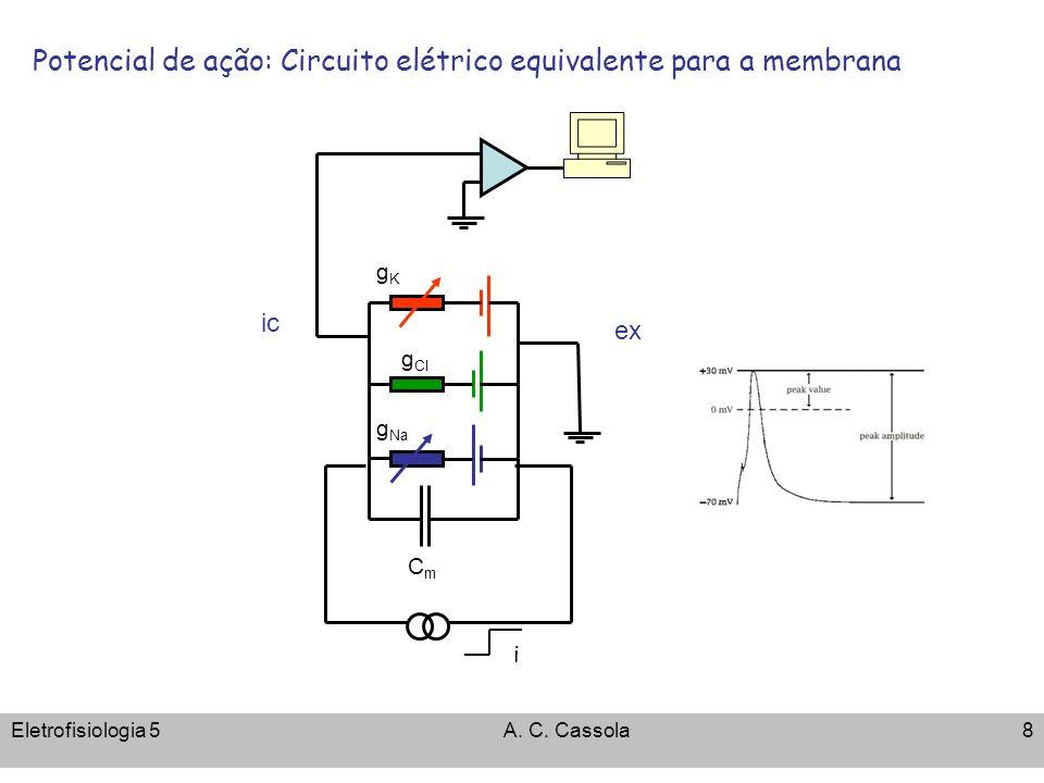 Potencial de ação: Circuito elétrico equivalente para a membrana