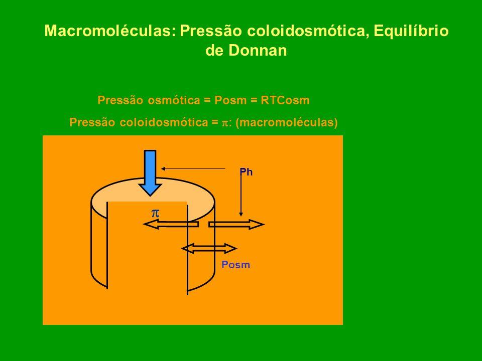 Macromoléculas: Pressão coloidosmótica, Equilíbrio de Donnan