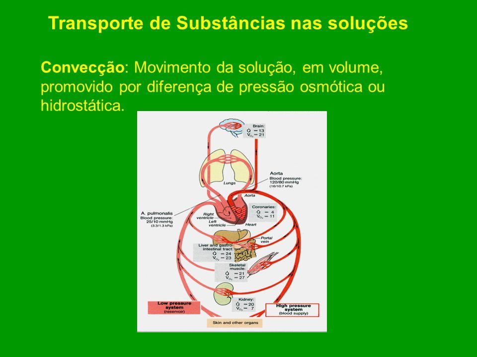 Transporte de Substâncias nas soluções