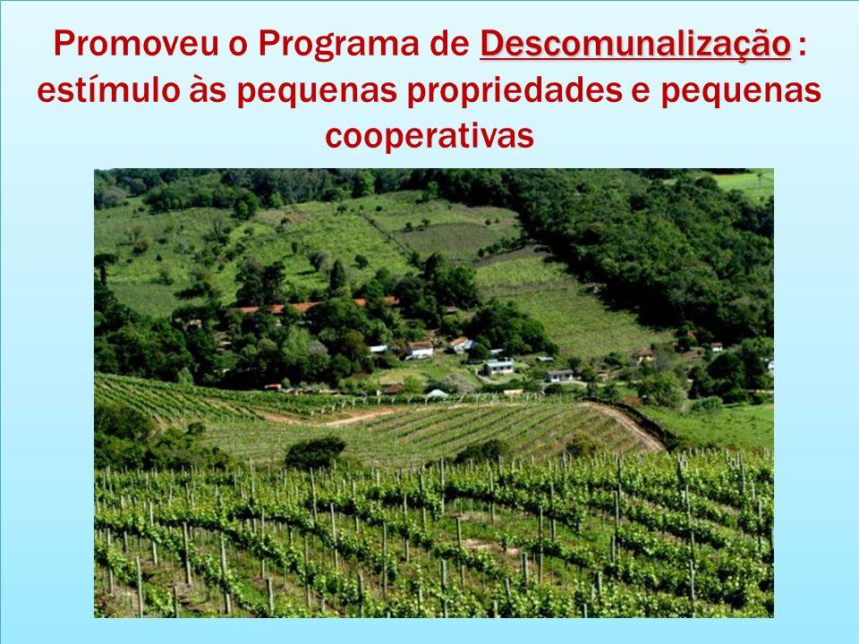 Promoveu o Programa de Descomunalização : estímulo às pequenas propriedades e pequenas cooperativas