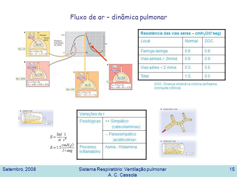 Fluxo de ar – dinâmica pulmonar
