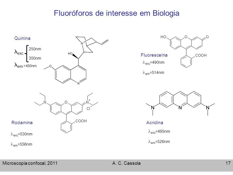 Fluoróforos de interesse em Biologia