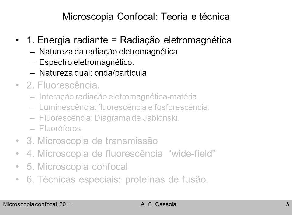 Microscopia Confocal: Teoria e técnica