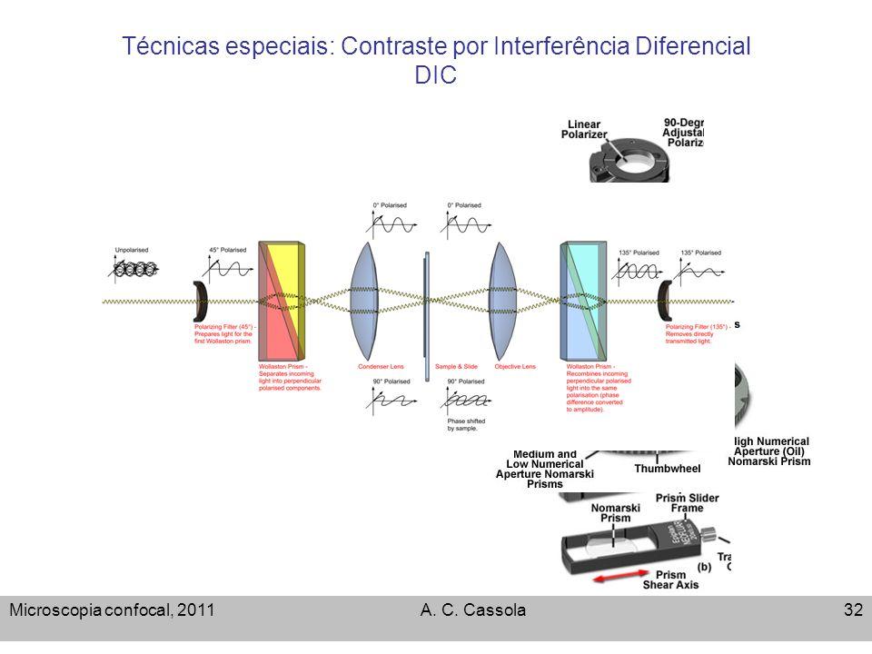 Técnicas especiais: Contraste por Interferência Diferencial DIC