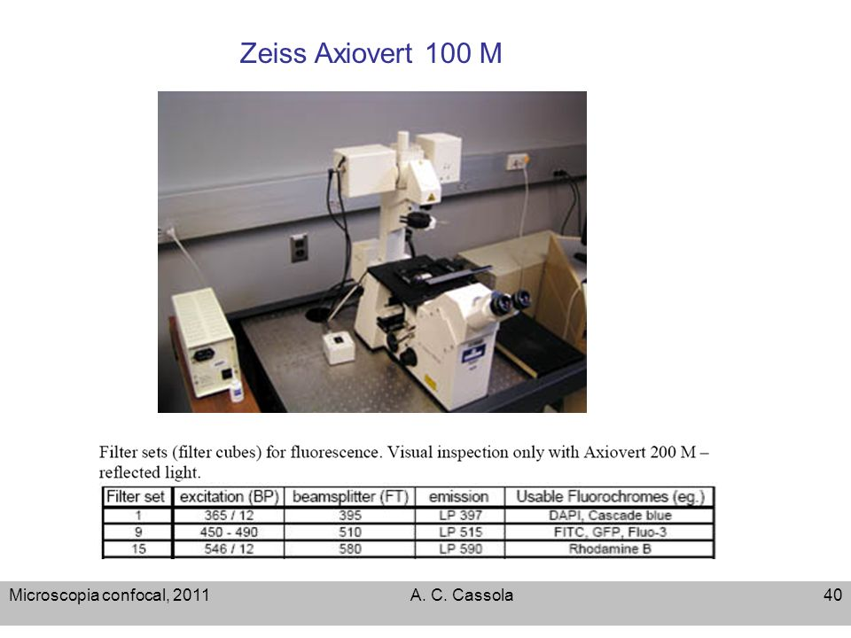 Zeiss Axiovert 100 M Microscopia confocal, 2011 A. C. Cassola