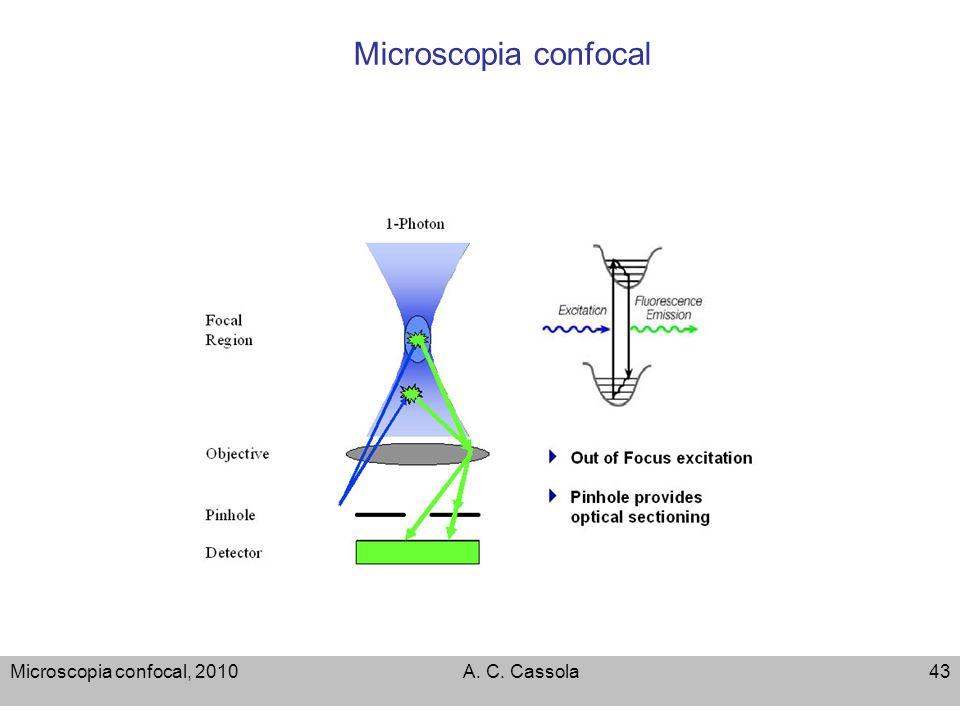 Microscopia confocal Microscopia confocal, 2010 A. C. Cassola