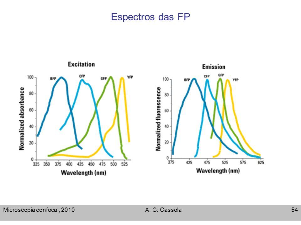 Espectros das FP Microscopia confocal, 2010 A. C. Cassola