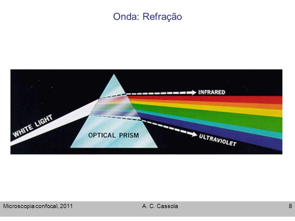 Onda: Refração Microscopia confocal, 2011 A. C. Cassola
