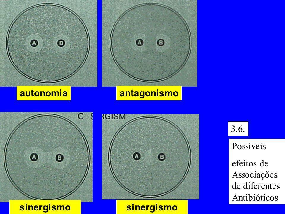 autonomia antagonismo. 3.6. Possíveis. efeitos de Associações de diferentes Antibióticos. sinergismo.