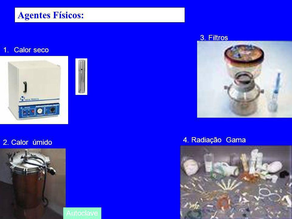 Agentes Físicos: 3. Filtros Calor seco 4. Radiação Gama 2. Calor úmido