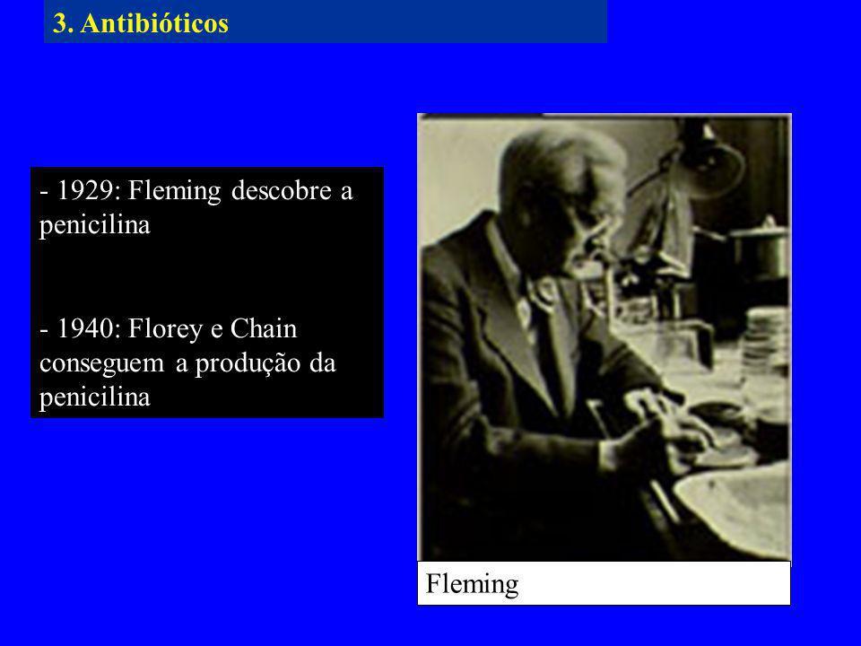 3. Antibióticos - 1929: Fleming descobre a penicilina. - 1940: Florey e Chain conseguem a produção da penicilina.