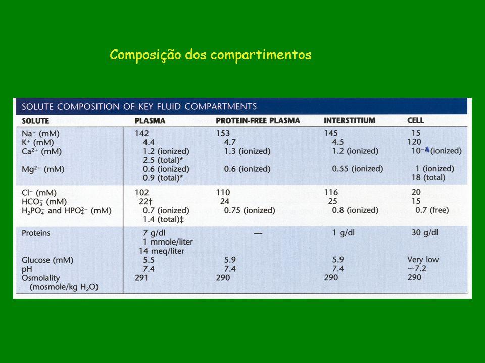 Composição dos compartimentos