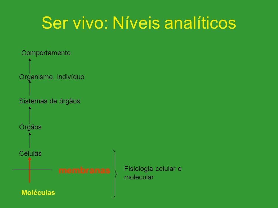 Ser vivo: Níveis analíticos