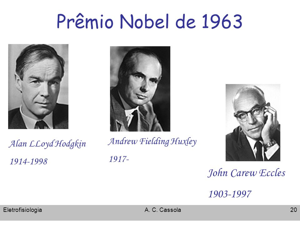 Prêmio Nobel de 1963 John Carew Eccles 1903-1997