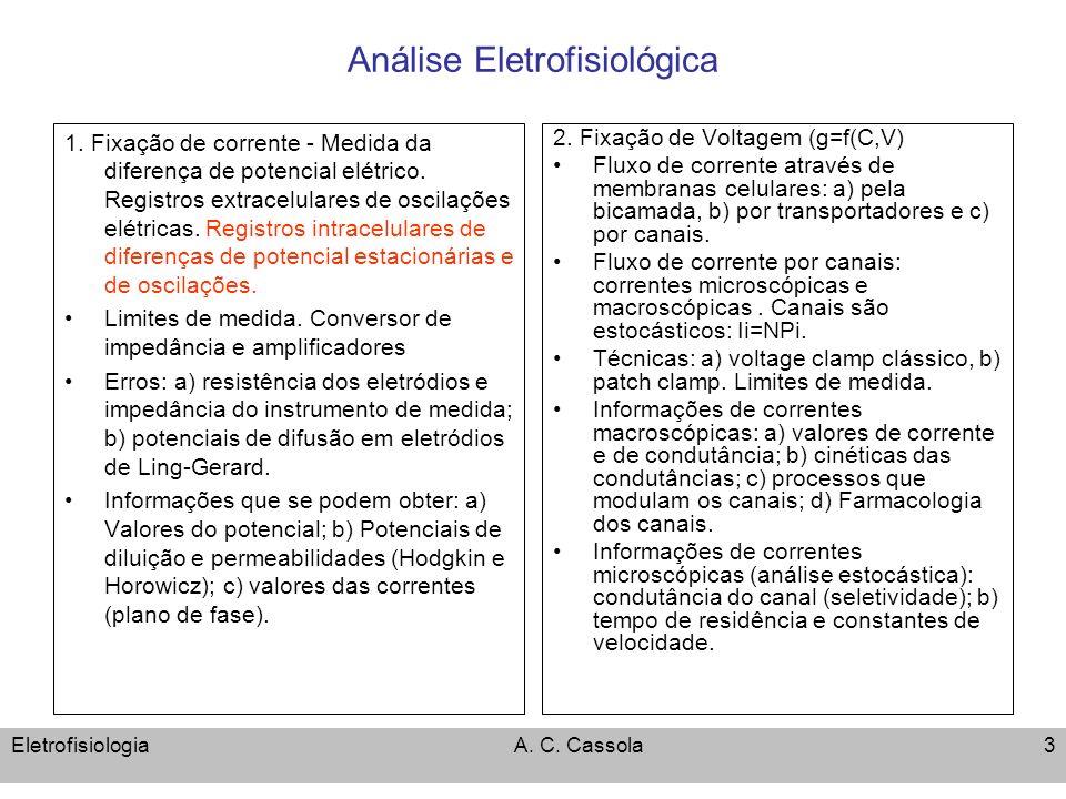 Análise Eletrofisiológica