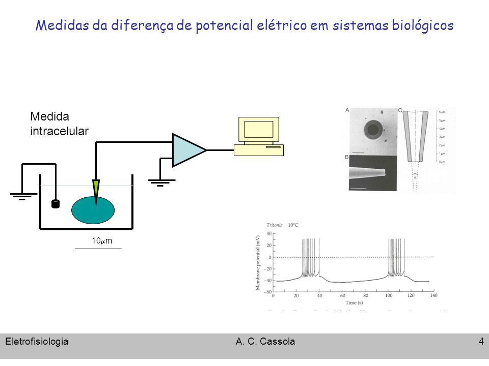 Medidas da diferença de potencial elétrico em sistemas biológicos