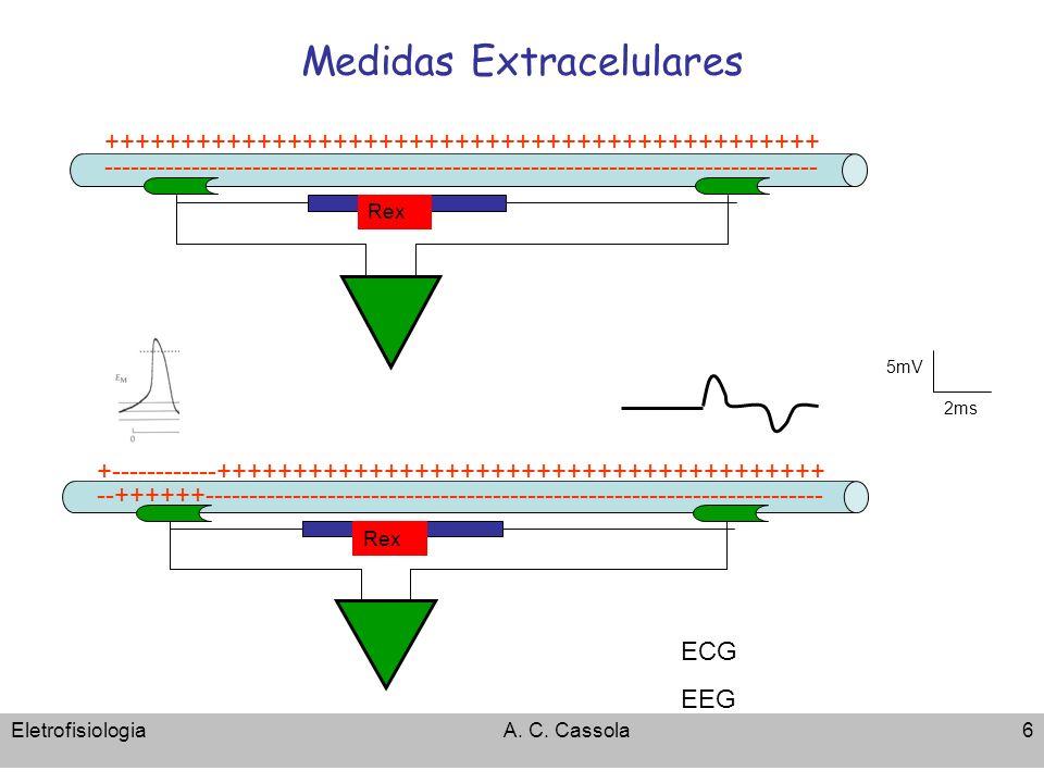 Medidas Extracelulares