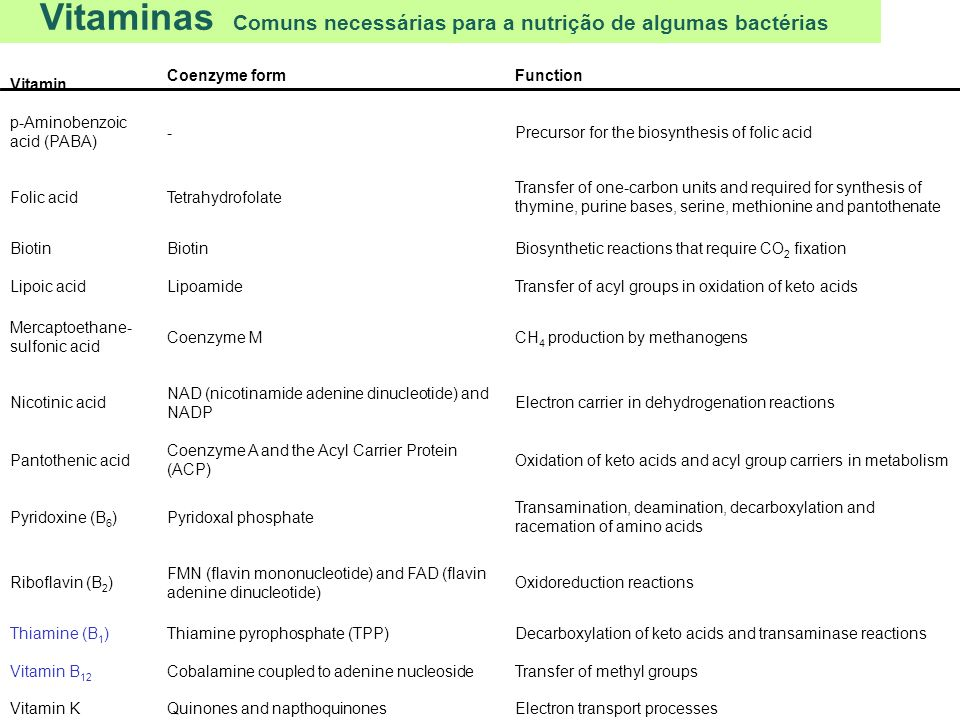 Vitaminas Comuns necessárias para a nutrição de algumas bactérias