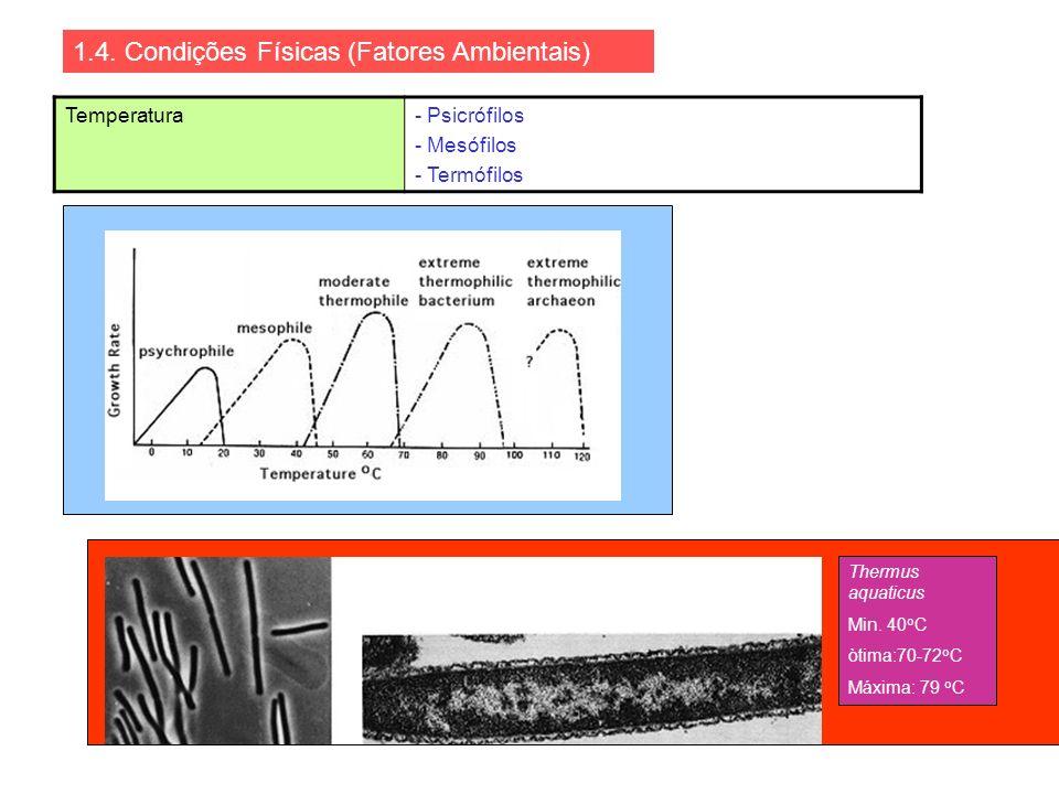 1.4. Condições Físicas (Fatores Ambientais)