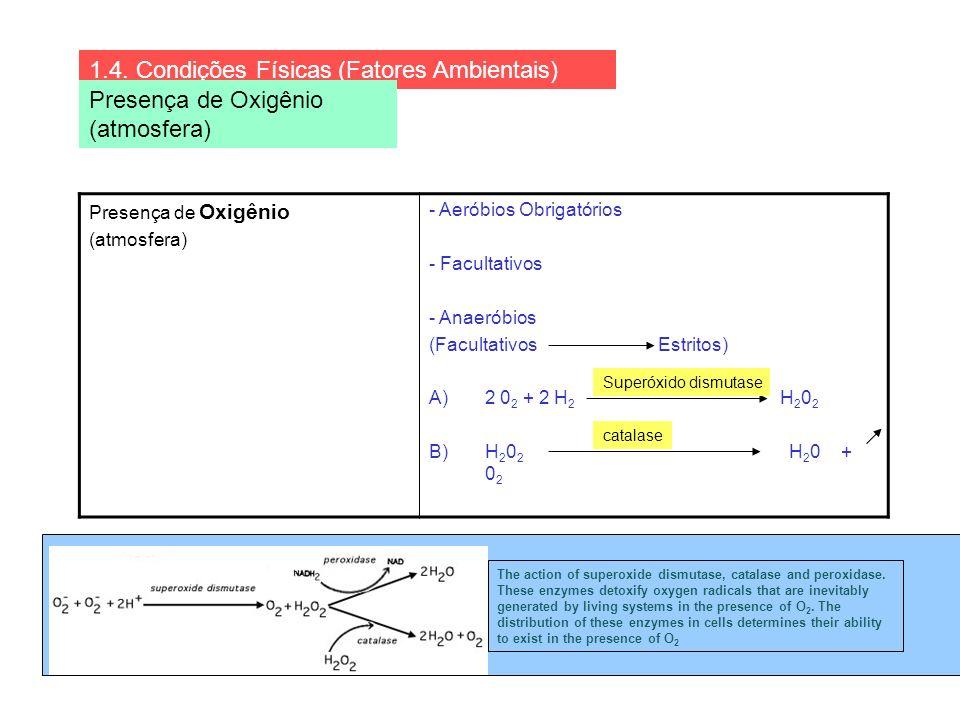 1.4. Condições Físicas (Fatores Ambientais) Presença de Oxigênio